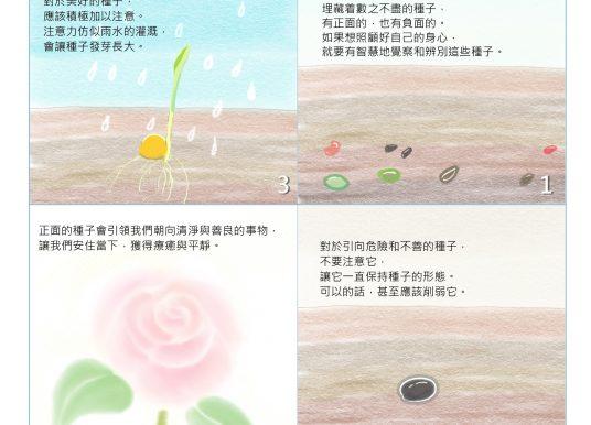 灌溉心田的種子